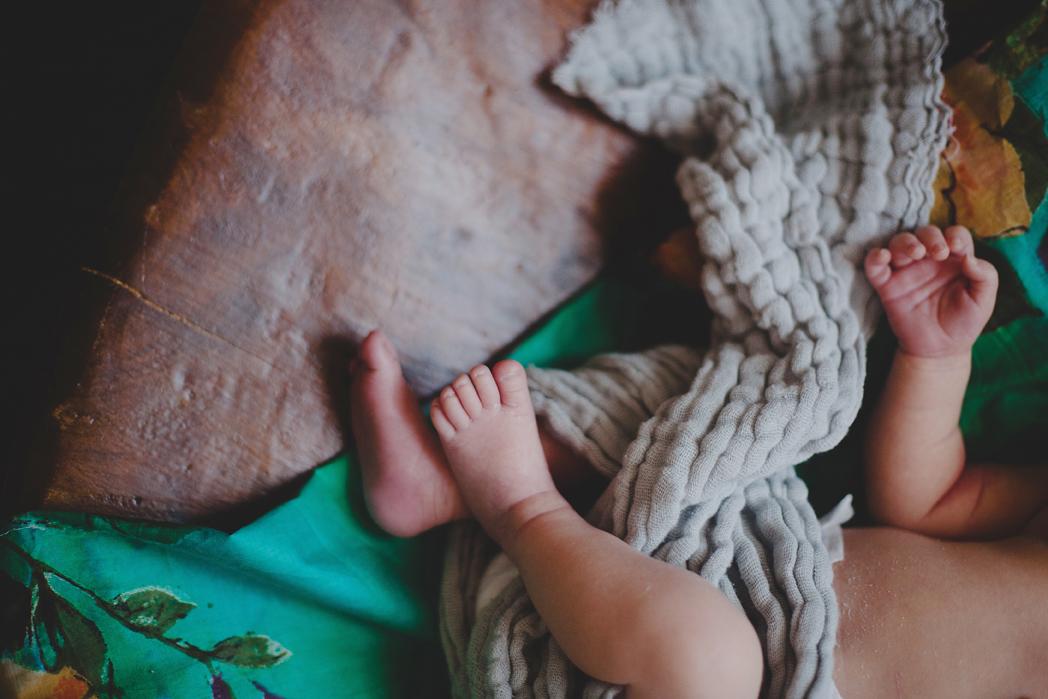 katie purnell newborn